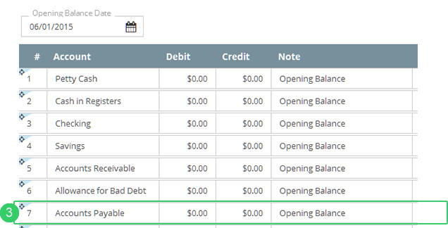 Enter Debit And/or Credit Balances In The Accounts Payable Field (3 Below).  Note Payables